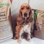 Prednosti nakupovanja v neodvisnih in manjših pasjih trgovinah